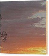 Nosara Playa Pelada Costa Rica Sunsets Wood Print