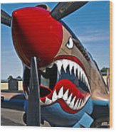 Nose Art On A Curtiss P-40e Warhawk Wood Print