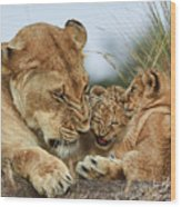 Nostalgia Lioness With Cubs Wood Print