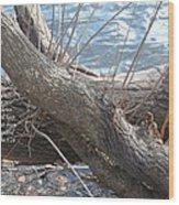 Not Forgotten Wood Print