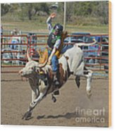 Not His First Rodeo Wood Print
