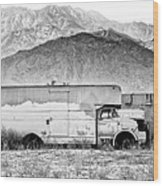 Not In Service Bw Palm Springs Wood Print