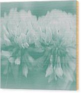 Not-so-white White Clover Wood Print