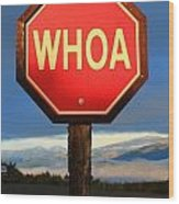 Not Your Ordinary Stop Sign Wood Print