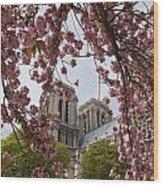 Notre Dame 1 Wood Print