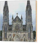 Notre Dame De Montligeon Basilica Wood Print by Olivier Le Queinec