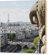 Notre Dame View From The Roof Wood Print