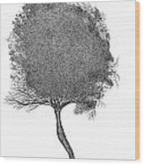 November 2011 Wood Print