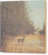 November Deer Wood Print
