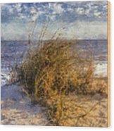 November Dune Grass Wood Print