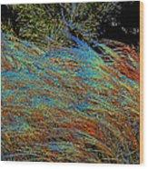 November Impression By Jrr Wood Print