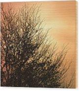 November Memories Wood Print