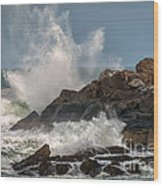 Nubble Lighthouse Waves 1 Wood Print by Scott Thorp