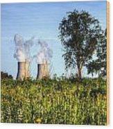 Nuclear Hdr4 Wood Print