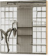 Nude Collar And Window Wood Print
