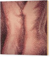 Nude Female Torso Drawings 1 Wood Print