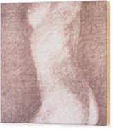 Nude Female Torso Drawings 3 Wood Print