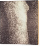 Nude Female Torso Drawings 4 Wood Print
