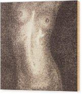 Nude Female Torso Drawings 5 Wood Print