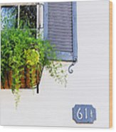 Number 61 And A Quarter - Charleston S C - Travel Photographer David Perry Lawrence Wood Print