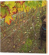 Nute Watches The Vines Wood Print by Jean Noren