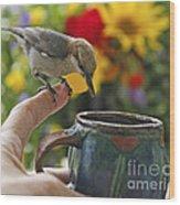 Nuthatch Bird On Finger Photo Wood Print