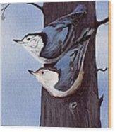 Nuthatch Pair Wood Print