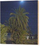 Nuweiba By Night Sinai Egypt Wood Print