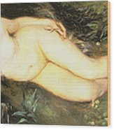 Nymph At The Stream Wood Print
