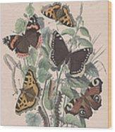 Nymphalidae Wood Print