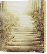 Nz Walkway  Wood Print