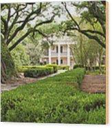 New Orleans Oak Alley Plantation Wood Print