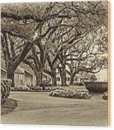 Oak Alley Slave Quarters Sepia Wood Print