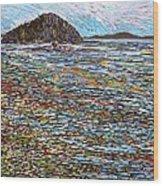 Oak Bay - Low Tide Wood Print