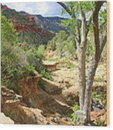 Over Slide Rock Wood Print