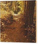 Oak Creek Trail Wood Print