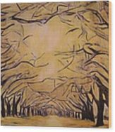 Oak Grove Wood Print
