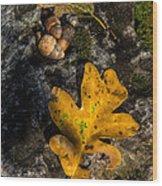 Oak Leaf And Acorn In Autumn Wood Print