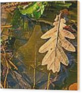 Oak Leaves In A Puddle Wood Print
