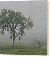 Oak Ridge 2702 Wood Print