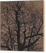 Oak Silhouette  Wood Print