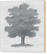Oak Tree Drawing Number Seven Wood Print by Alan Daysh
