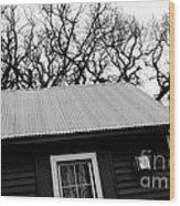 Oak Tree Farm House Wood Print