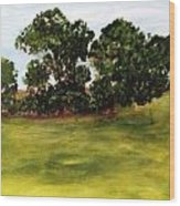 Oak Trees Wood Print by Andrea Friedell