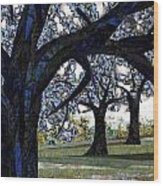 Oak Veiling Wood Print