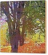 Oaks 27 Wood Print