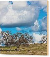 Oaks And Clouds Wood Print