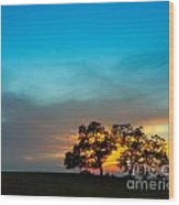 Oaks And Sunset 2 Wood Print by Terry Garvin