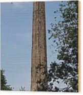 Obelisk - Central Park Nyc Wood Print