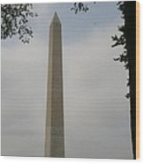 Obelisk - Washington Dc Wood Print